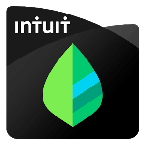 Download Mint for iPad