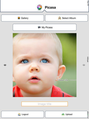 Download Picasa for iPad