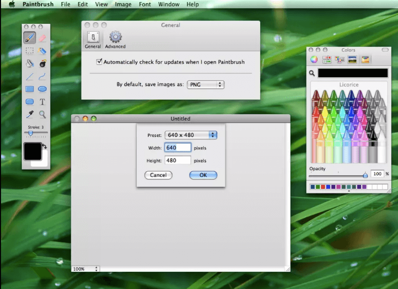 Download Paint for Mac