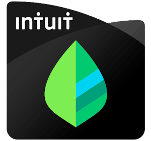 Mint for iPad Free Download | iPad Finance