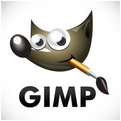 GIMP for iPad Free Download | iPad Productivity