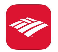 Bank of America App for iPad Free Download | iPad Finance